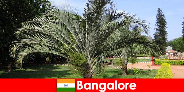 Her yabancı için tüm yıl boyunca Bangalore'nin hoş iklimi bir geziye değer