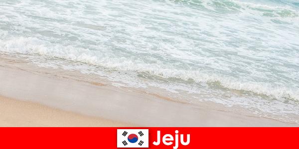 İnce kumu ve berrak suyuyla Jeju, sahilde aile tatili için ideal bir yerdir.