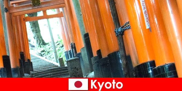 Japonya'daki balıkçı köyü Kyoto, UNESCO'nun çeşitli turistik yerlerine sahiptir