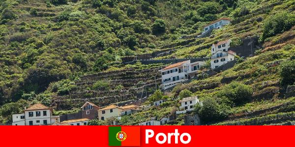 Dünyanın her yerinden şarap severler için Porto tatil yeri