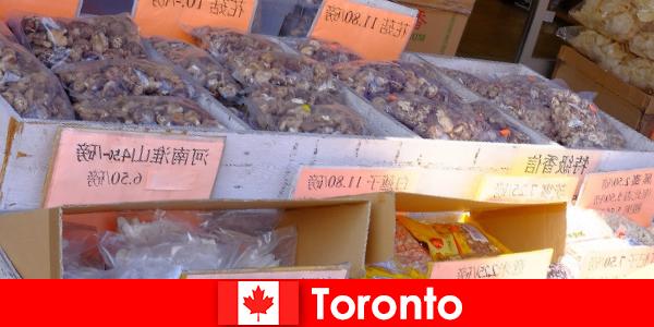 Toronto ve özellikle çeşitli gastronomi hiçbir yolcuyu aç bırakmayacak
